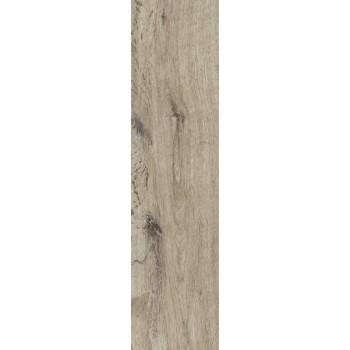 Siena Beige 15,5x62