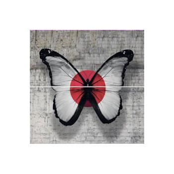 French touch butterfly inserto 59,3x59,3