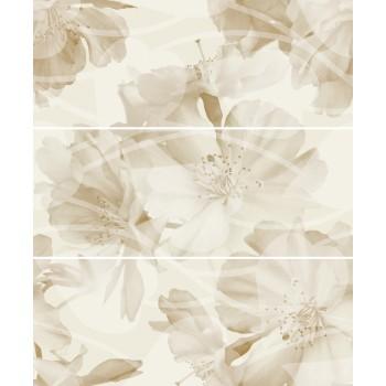 Jasmin Oliwka komplet 3*(20x50)
