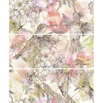Koliber Oliwka komplet 3*(20x50)