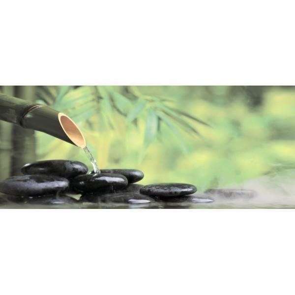 Bambu 2 centro 25x60