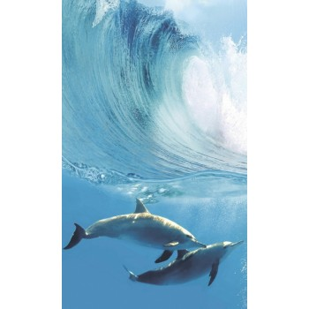 Dolphins A komplet 4*(25x60)