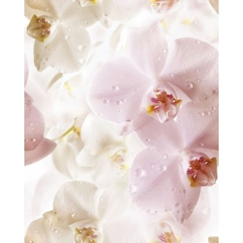Flowers komplet 3*(25x60)