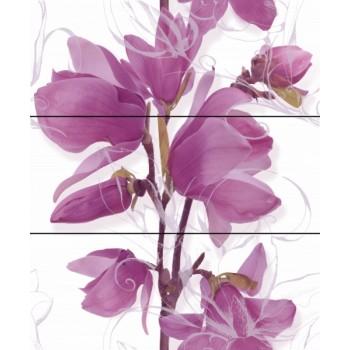 Komplet Magnolia 60x60
