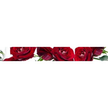 Listwa Rosarium 6,5x50