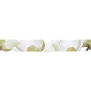 White Lilies listwa 6,5x60