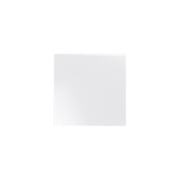 BLACK&WHITE BLANCO 20X20 GAT.1
