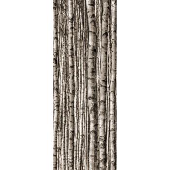 Birch 4*89,8x59,8...