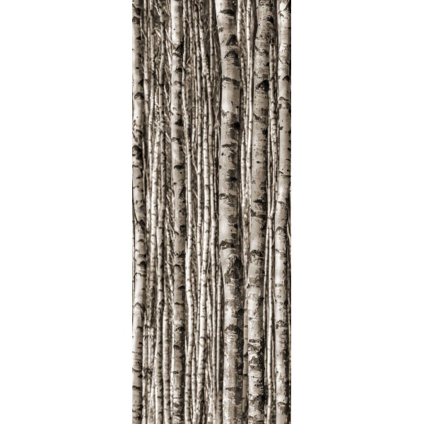 Birch 4*89,8x59,8 (89,8x239,8) GAT.I