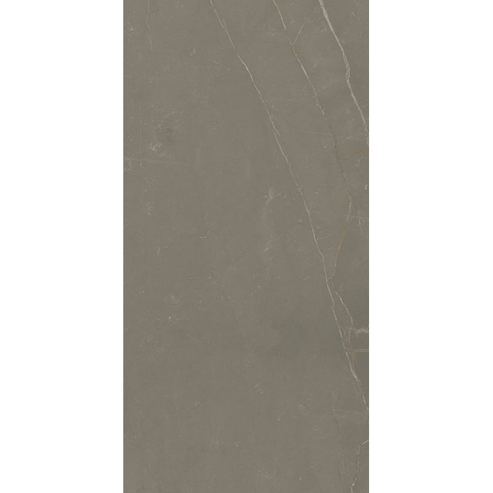 Linearstone Taupe Gres Szkl.Rekt.Mat.59.8X119.8 GAT.I