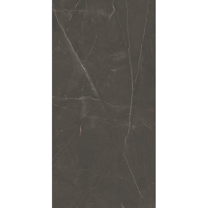 Linearstone Brown Gres Szkl.Rekt.Mat.59.8X119.8 GAT.I