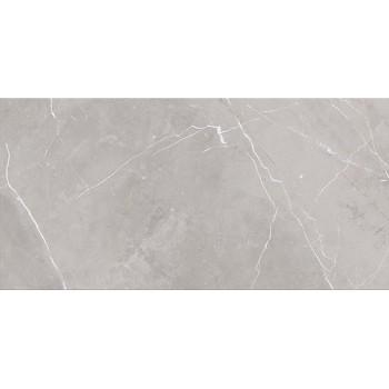 ASSIER GREY GLOSSY 29,7x60